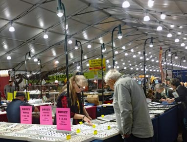 trade show lighting rentals at Tucson 22nd st show