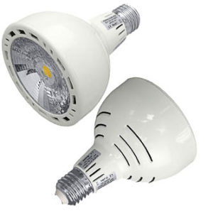 Bright LED track light replacement bulbs